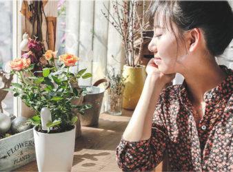 Xiaomi Mi Plants Monitor Geekbuying
